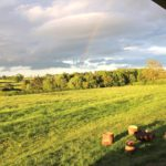 View from veranda at Village Farm Getaway, holidays glamping and luxury camping in East Midlands and Leicestershire