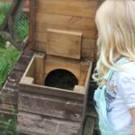Collect eggs at Village Farm Getaway, holidays glamping and luxury camping in East Midlands and Leicestershire